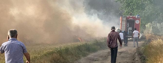 Buğday ekili tarlada yangın!