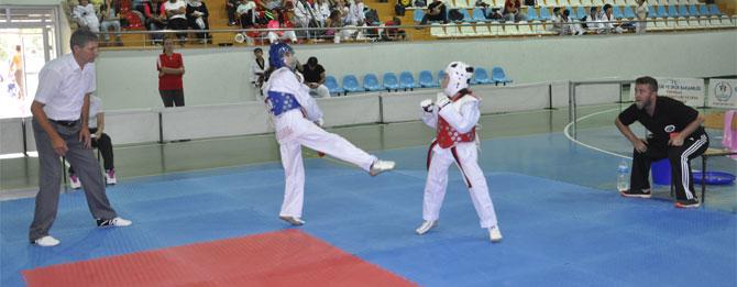 Taekwondocular ter döktü
